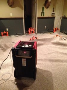 Commercial Restoration Drying Carpet