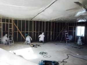 mold-removal-on-site-remediation-team